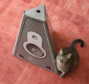 On distingue bien la forme triangulaire à coté de Schrodï le chat.